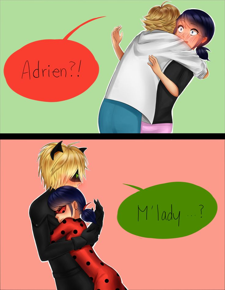 Image result for miraculous ladybug marinette y chat noir