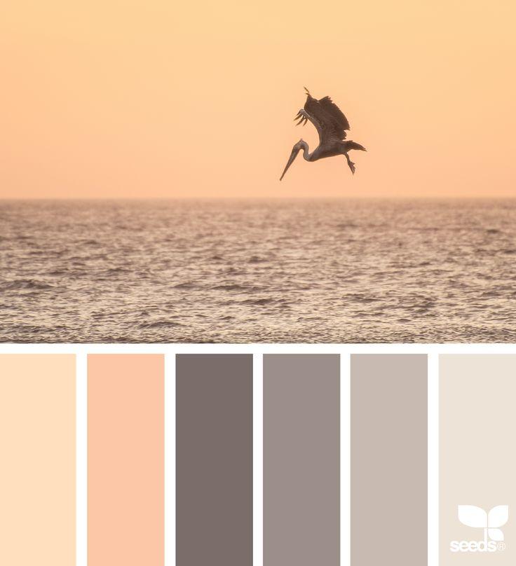 Creature Color - http://www.design-seeds.com/creatures/creature-color-3
