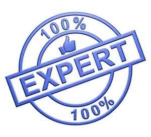 Consultant SEO, un expert du référencement naturel ?