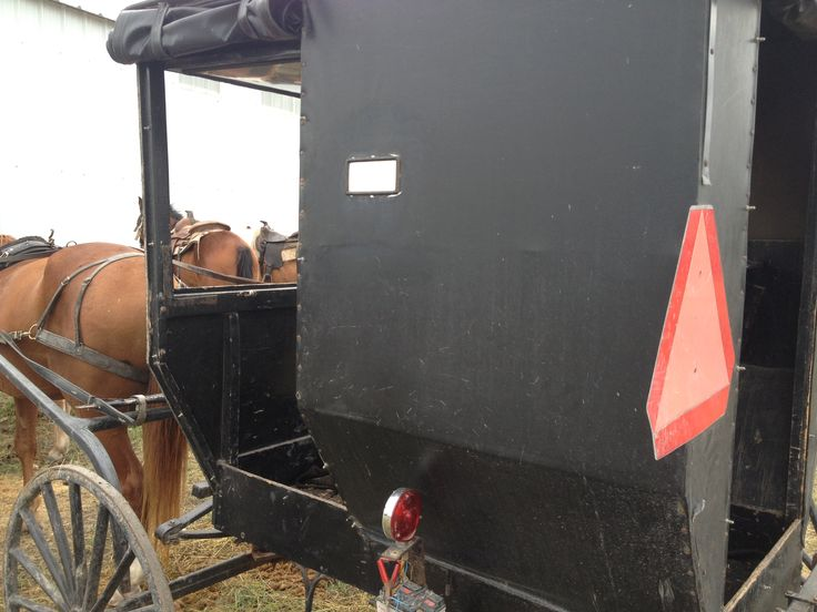 Buggy for sale at Bee County Texas Amish auction