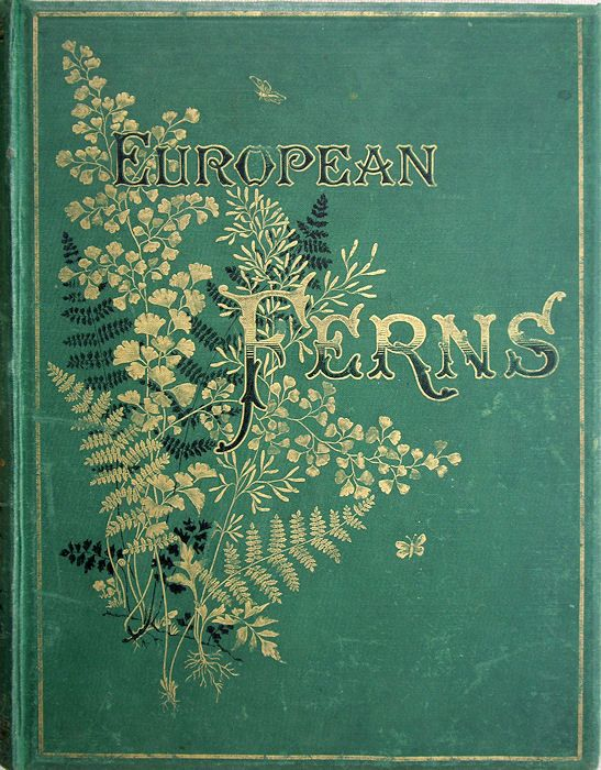 ♕ European Ferns. Britten, James; (Illustrations by D. Blair)