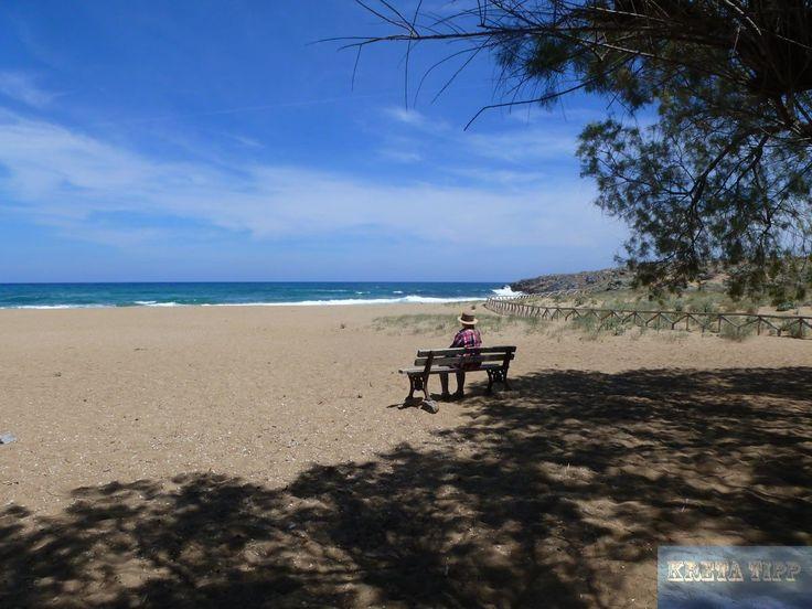 Malia Tropical Beach