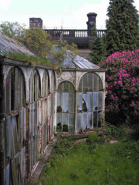 For a hundred years flowers grew, lovers hid and masterpieces were painted here then it fell to ruin alongside the family ruled for a hundred years. It still stands against weather and time but the family does not.  –kah2013 (story idea inspired by Conservatory, Wentworth Castle
