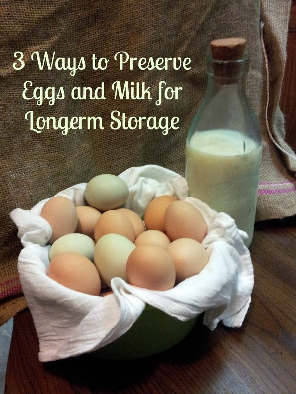 3 Ways to Preserve Eggs and Milk for Long-term Storage   | via www.TheSurvivalMom.com