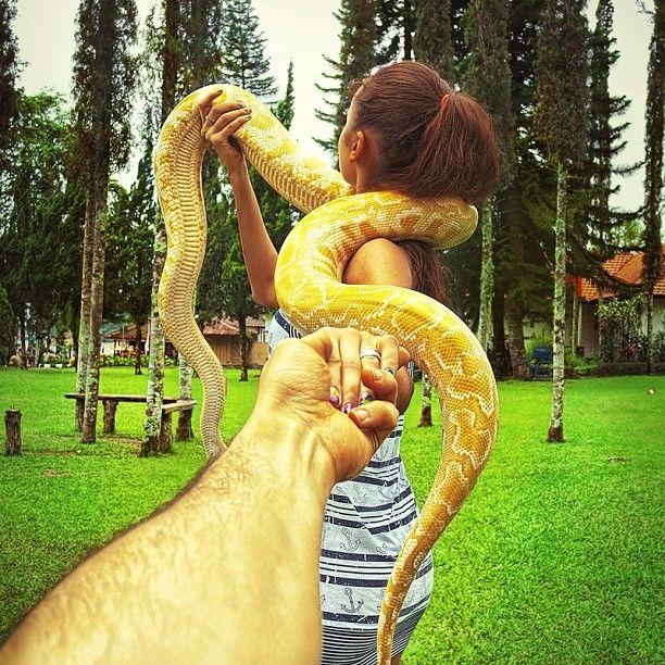.@muradosmann | #followmeto the snakes of Bali @Rachel Ward | Webstagram - the best Instagram viewer