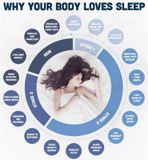 Slapen is meer dan een passieve bezigheid