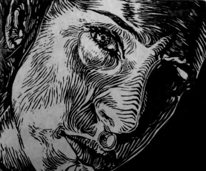 Self Portrait As Zebra Linocut