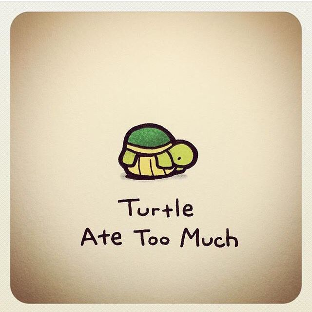 Turtle ate too much
