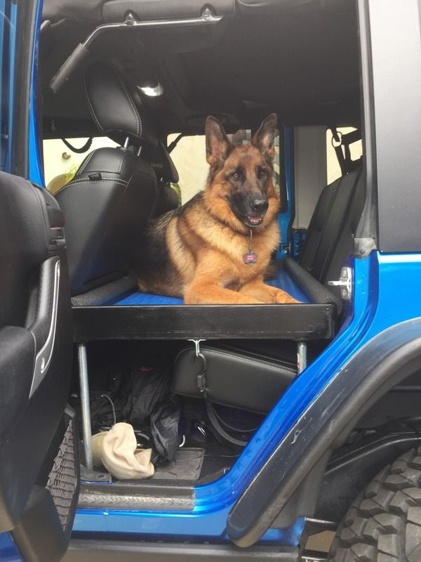 Making Your Jeep Dog Friendly