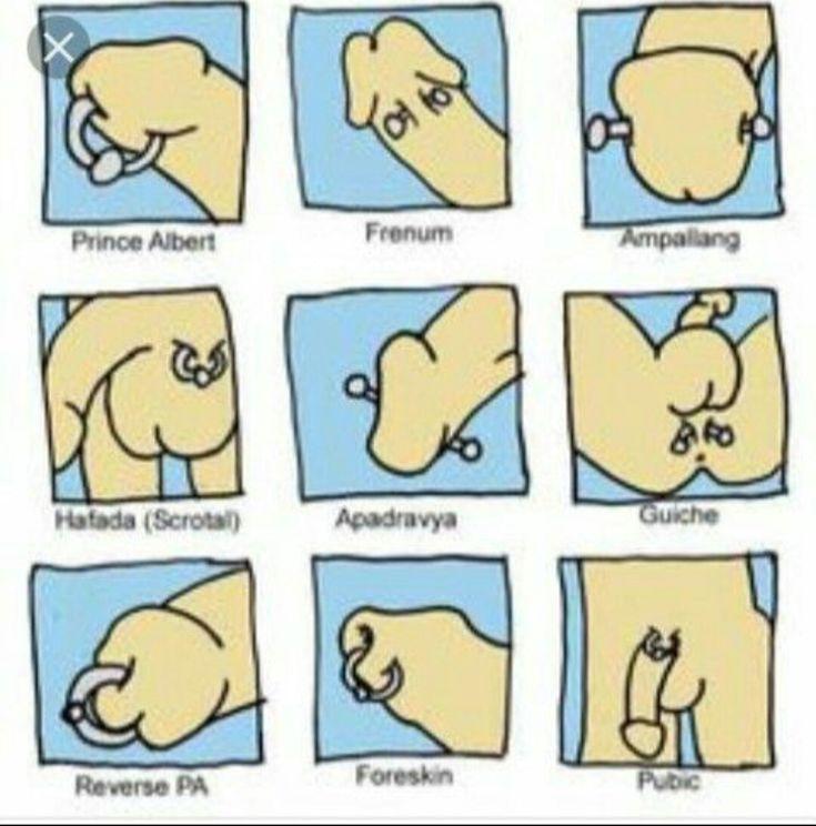 Types of dick piercings