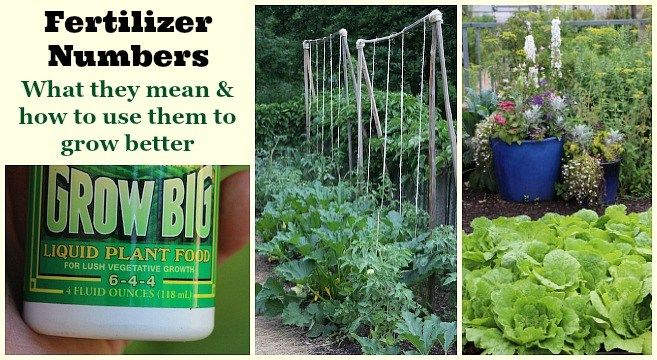 Fertilizer Numbers What They Mean And How To Use Them To Grow