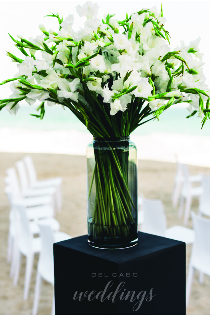 Flowers that contrast with the blue Cabo sea. Visit our blog and learn about new color trends for your floral arrangements.