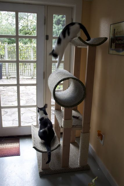 this human did a re-donk good job of this cat tower. the concrete form tube in particular was a great choice. I have the scrap for flat plaforms. might need a 2X4 or two. and some carpet. but...
