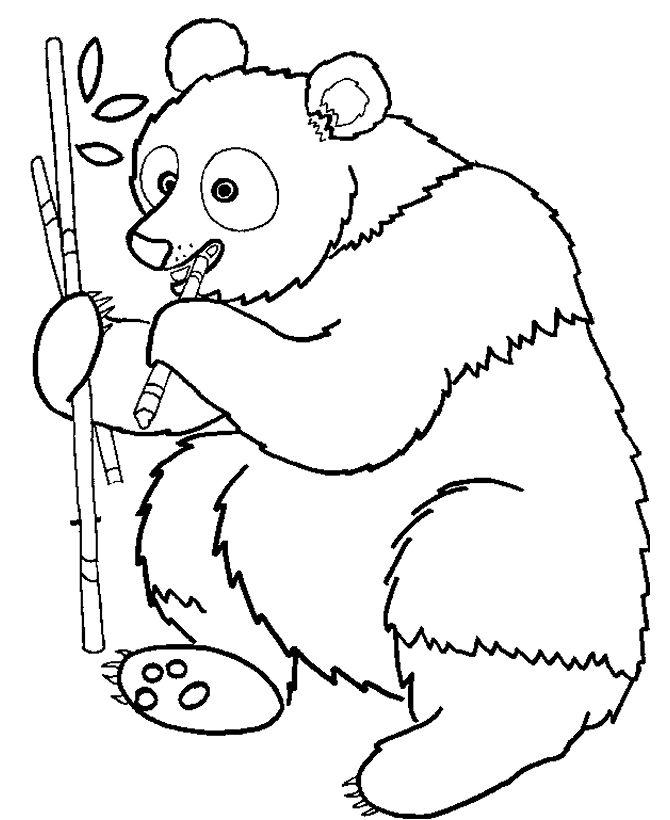 Magnificent Secret Garden Coloring Book Tall Curious George Coloring Book Rectangular Skull Coloring Book Marvel Coloring Books Young Pantone Color Books ColouredFairy Coloring Book 55 Best Panda Mania Images On Pinterest | Pandas, Coloring Books ..