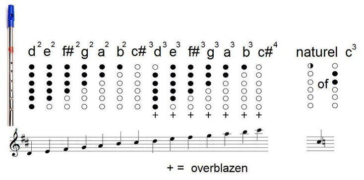 Een musicologie van de Keltische en naburige stijlen: Muziekinstrumenten en ensemblespel in de traditionele Ierse muziek