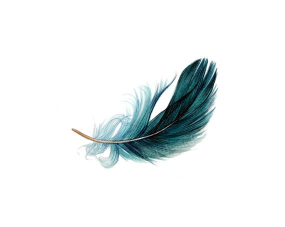 Floating Feather 6 watercolor study Original Feather by ......baby