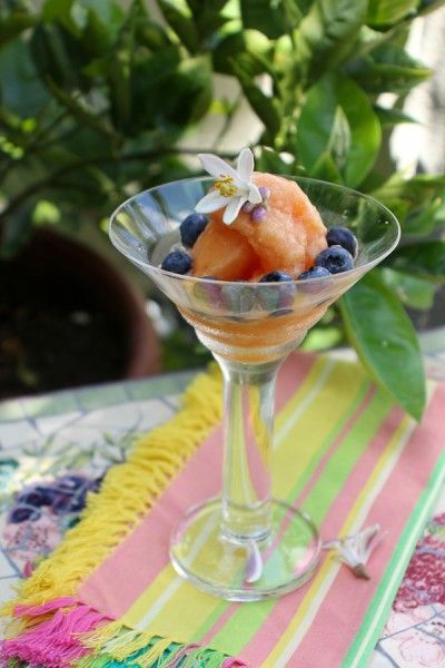 Nectarine Sorbet-5427 | Food | Pinterest