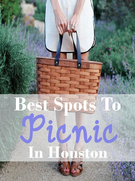 Best Picnic Spots in Houston Area! Romantic picnics, family picnics and group picnics. Beautiful places to have a picnic in Southeast Texas.