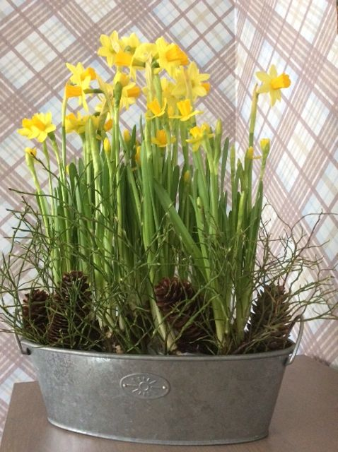 Table decorating, yellow flowers
