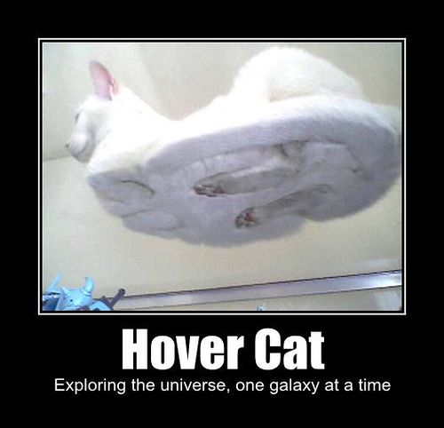 So this actually DID make me laugh out loud!  Ha ha ha!!