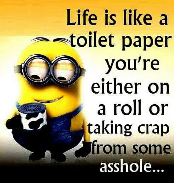 7 best good morning quotes images on pinterest minion top funny today top 61 lol minions 013013 am sunday 26 february 2017 pst 61 pics voltagebd Image collections