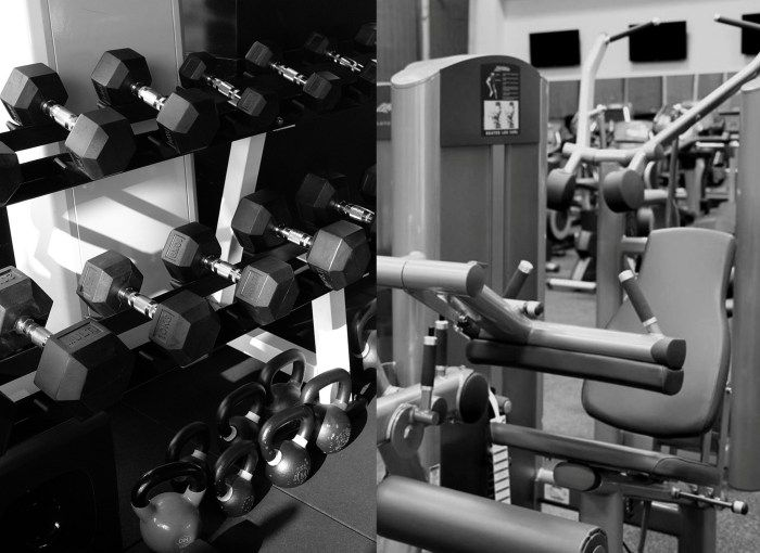 free weights vs machines essay Free weights vs machines - which is better a big time hot topic around my gym and among body building in general relates to the topic of free weights vs machines guys that i know who lift regularly have very strong opinions about this.