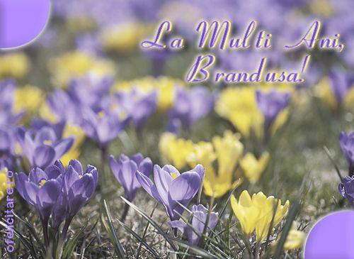 La multi ani, Brandusa!