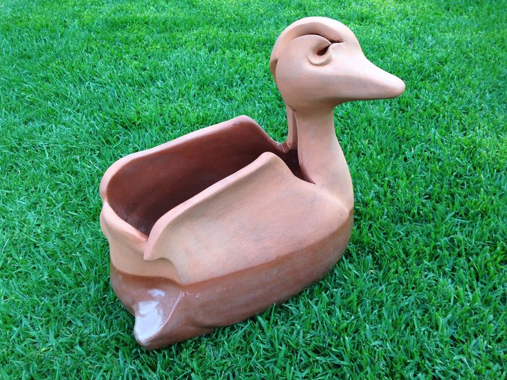 Duck by Lalage Hunter