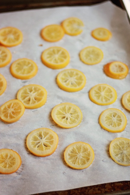 candied meyer lemon slices | bites and sights