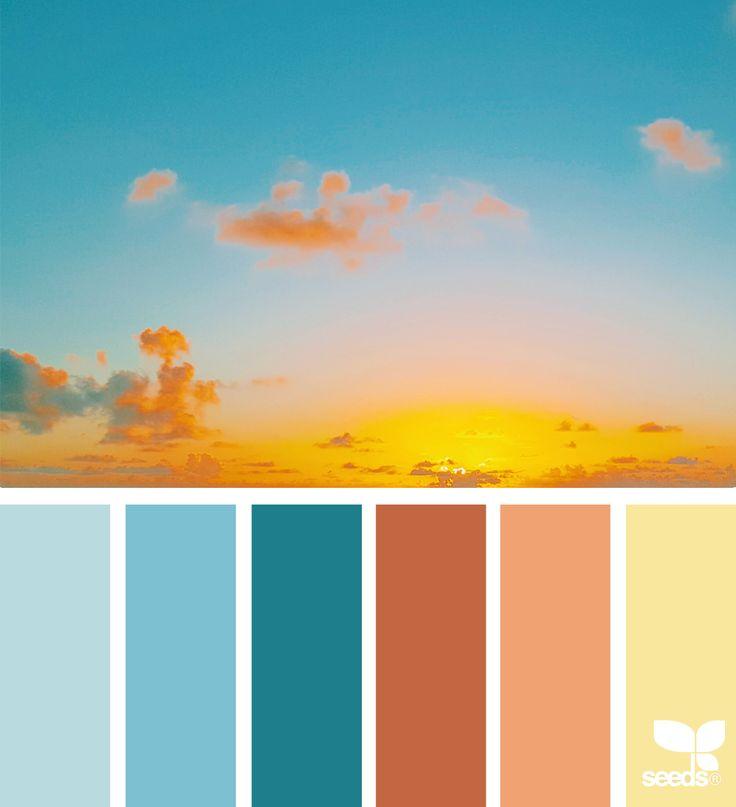 Best 10+ Seeds Color Schemes Ideas On Pinterest