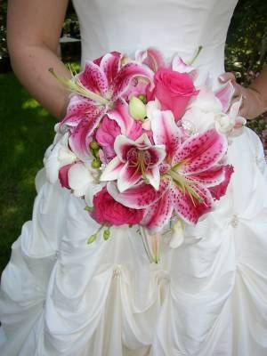 best oriental lily  stargazer wedding flowers images on, Natural flower
