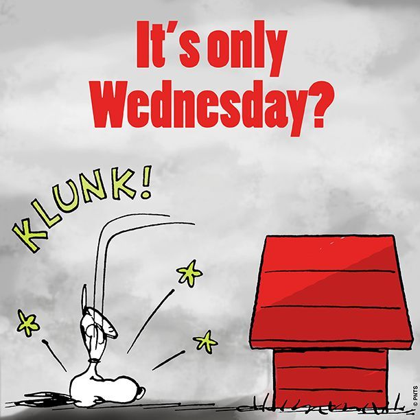 It's Only Wednesday?
