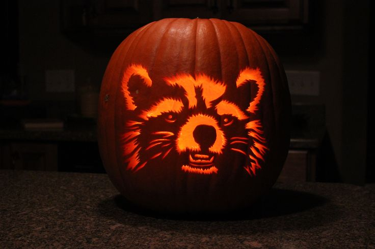Rocket from guardians of the galaxy pumpkin carving and