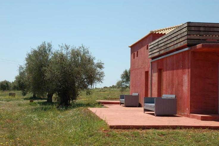 Olive Tree House, Eumelia Organic Farm & Guesthouse - Gouves village, Lakonia