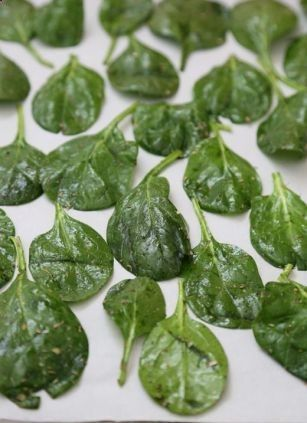 SPINACH-CHIPS-2-large-handfuls-of-spinach-1-Tbsp-olive-oil-12-Tbsp-Italian-herb-seasoning-18-tsp-sea-salt.-Bake-at-350-for-9-12-minutes. #best recipe to try