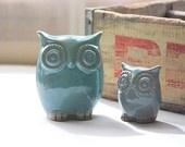 robins egg blue owls