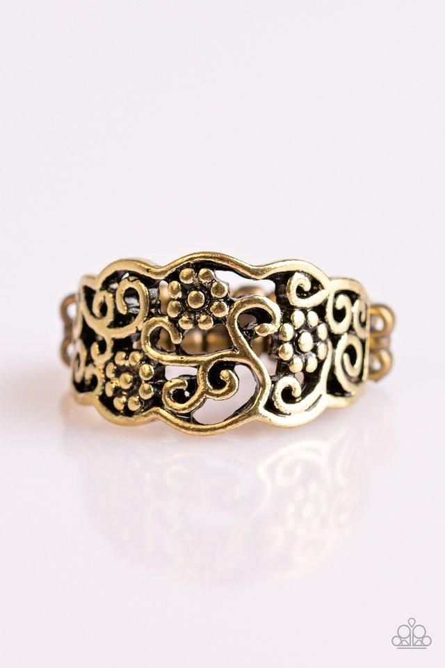BRASS CIRLCES IN CIRCLES Paparazzi Stretchband Ring new