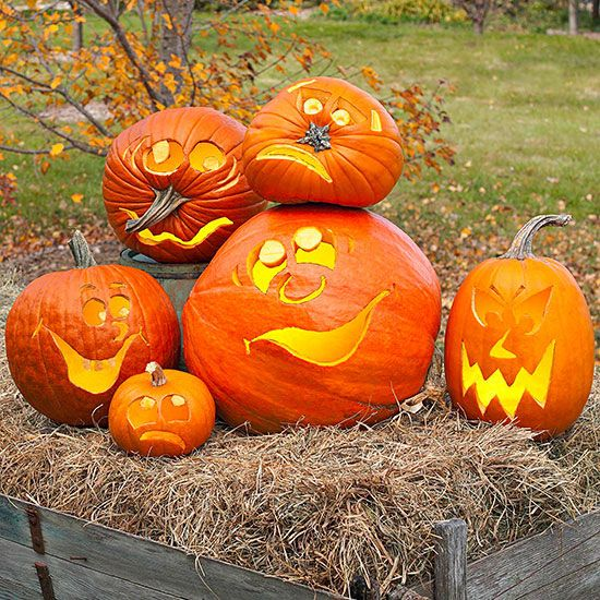 Goofy Group of Pumpkins; Love how they cut them on the top and used the stem as a nose!