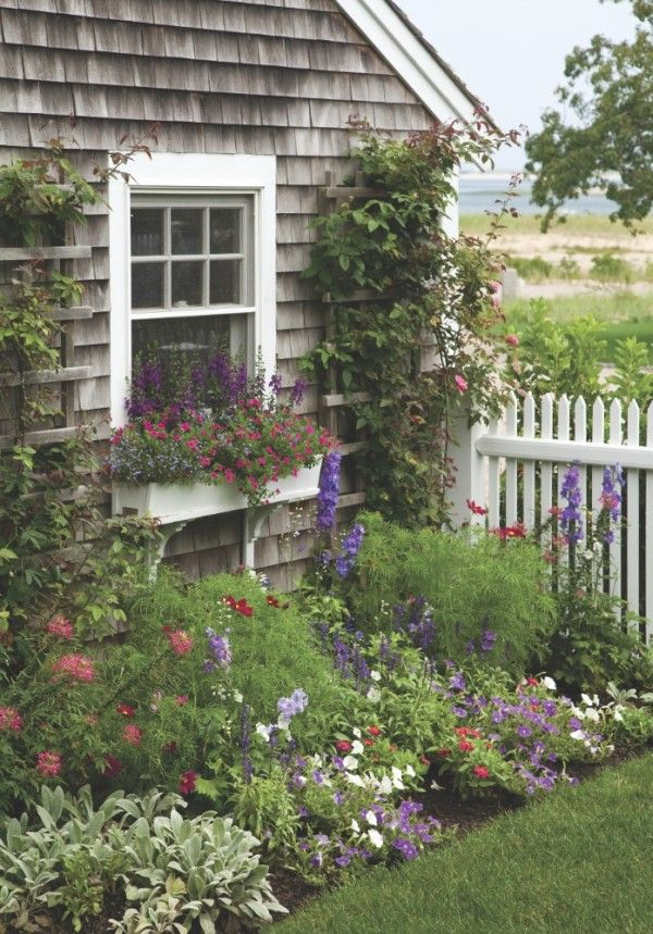 Seaside cottage garden!!! Bebe'!!! Love this adorable garden and windowbox and lattices with vines!!!