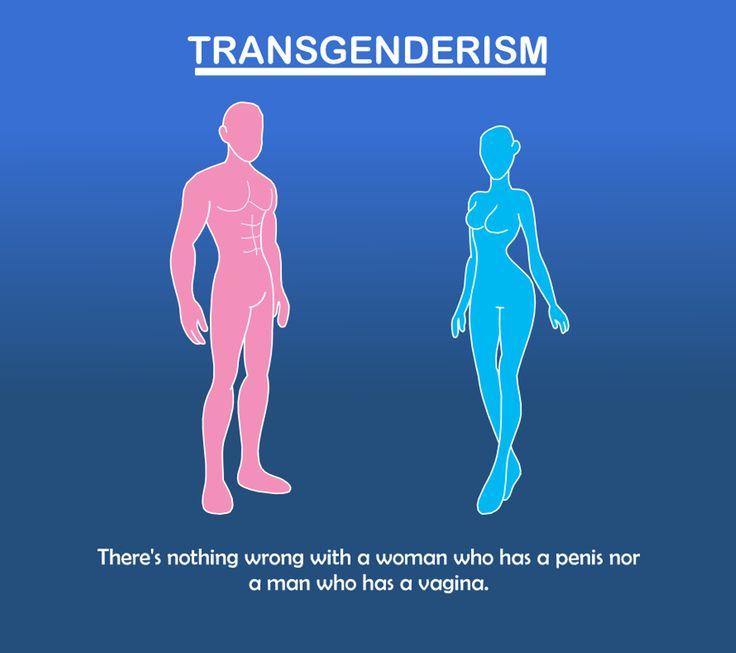 Transgender anatomy pictures
