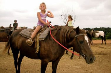 Nestled in the Roanoke Valley, Slocum's Appaloosa Ranch offers a variety of disciplines and a home-like feel. Trail riding, lessons, camps. You will find a diversity of people and horses.