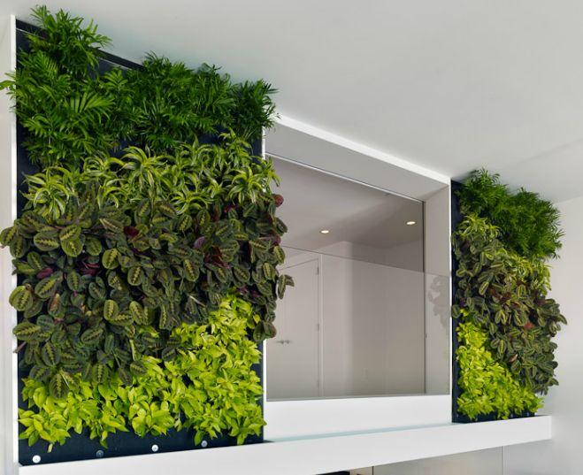 Grüne Büros – so macht Arbeit Spaß • Blumen & Pflanzen Blog • 99Roots.com