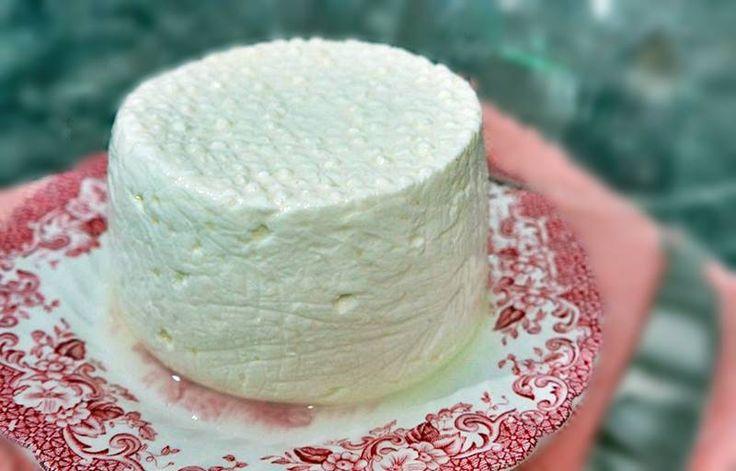 Queijo fresco   Ingredientes: 1lt leite do dia gordo 120gr leite em pó magro 20 gotas coalho liquido Preparação: Num tacho misturar o leite do dia com o leite em pó. Aquecer a 37ºC (eu fiz a olho colocando o dedo). Retirar do lume e acrescentar o coalho. Mexer bem. Deixar repousar 1h e cortar a coalhada com …