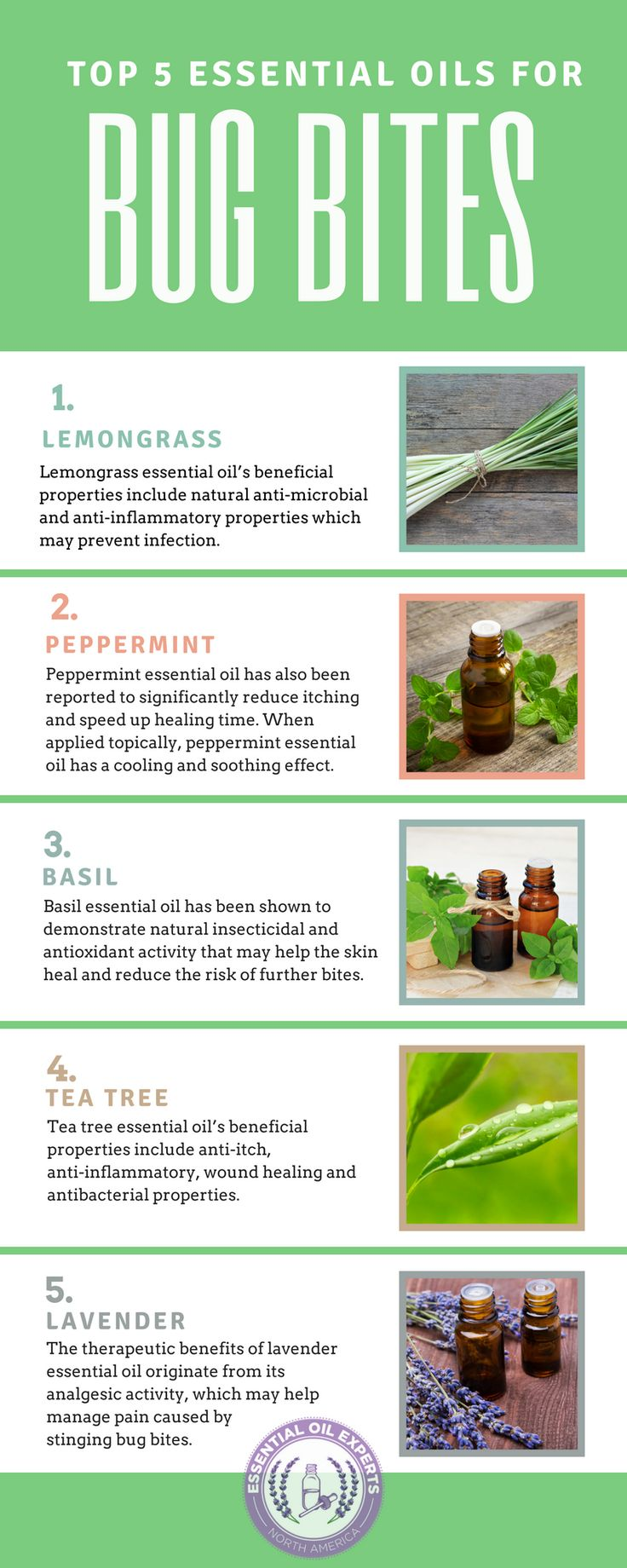 I have tea tree and lavender on hand. The Top 5 Essential Oils for Bug Bites: Insect, Mosquito, Spider, Tick, Ant & Bed Bug Bites