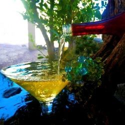 This looks Great! How To Create A Wine Bottle Fountain