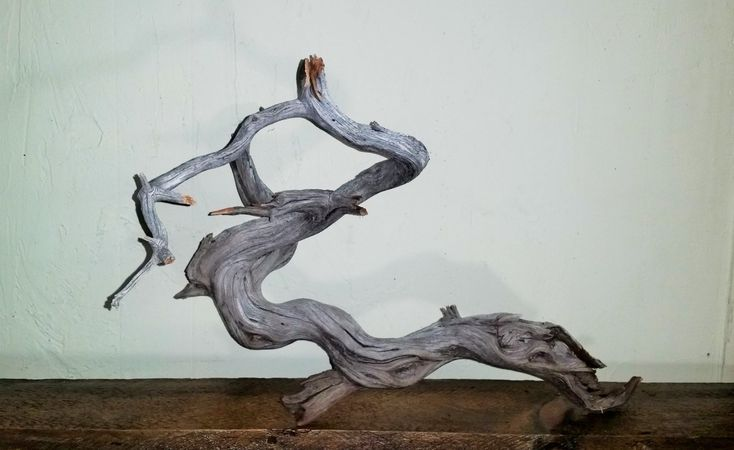 48 best images about manzanita driftwood on pinterest for Driftwood for fish tank