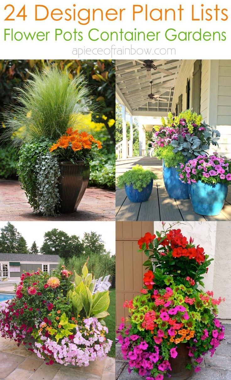 10 Plant Combination Ideas For Container Gardens Awesome And Gorgeous In 2020 Fall Container Gardens Container Plants Fall Flower Pots