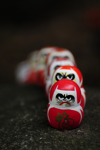 箕面 勝尾寺 Daruma parade ----------- #japan #japanese
