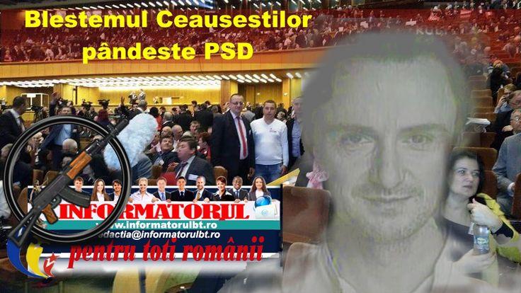 Stafful PSD ciuruit de kalashnicovul lui Bregovic