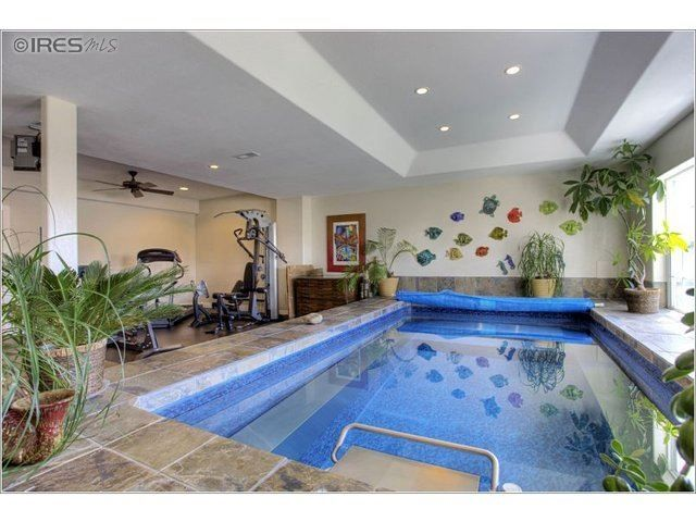another indoor endless pool workout roomwith sea creature decorations. Interior Design Ideas. Home Design Ideas